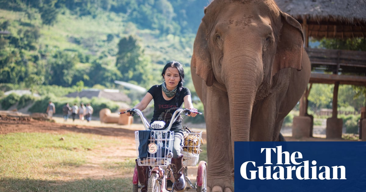 10 of the best ethical travel companies | Travel | The Guardian