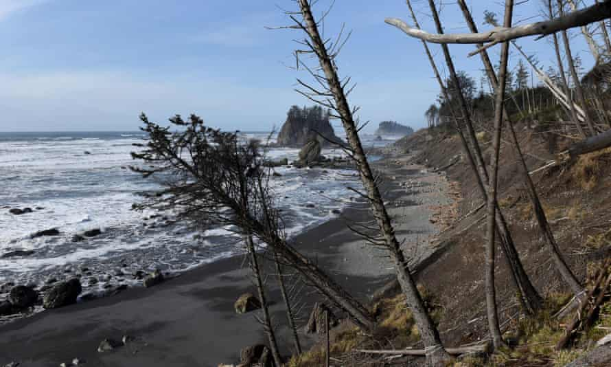 A coastline of the Pacific Ocean, damaged by erosion, on the Quinault Indian Reservation in Taholah, Washington.