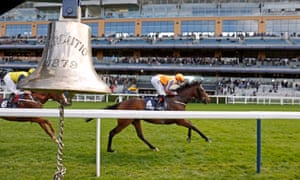 talking horses bank on sabador to seal victoria cup for buick at