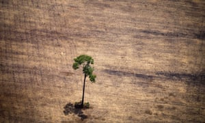 A deforested area in the middle of the Amazon jungle.