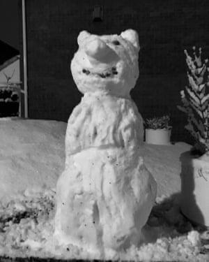 Linda's  snow pig