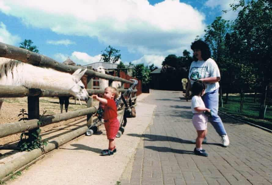 Chipsticks For The Llama Colchester Zoo 1991