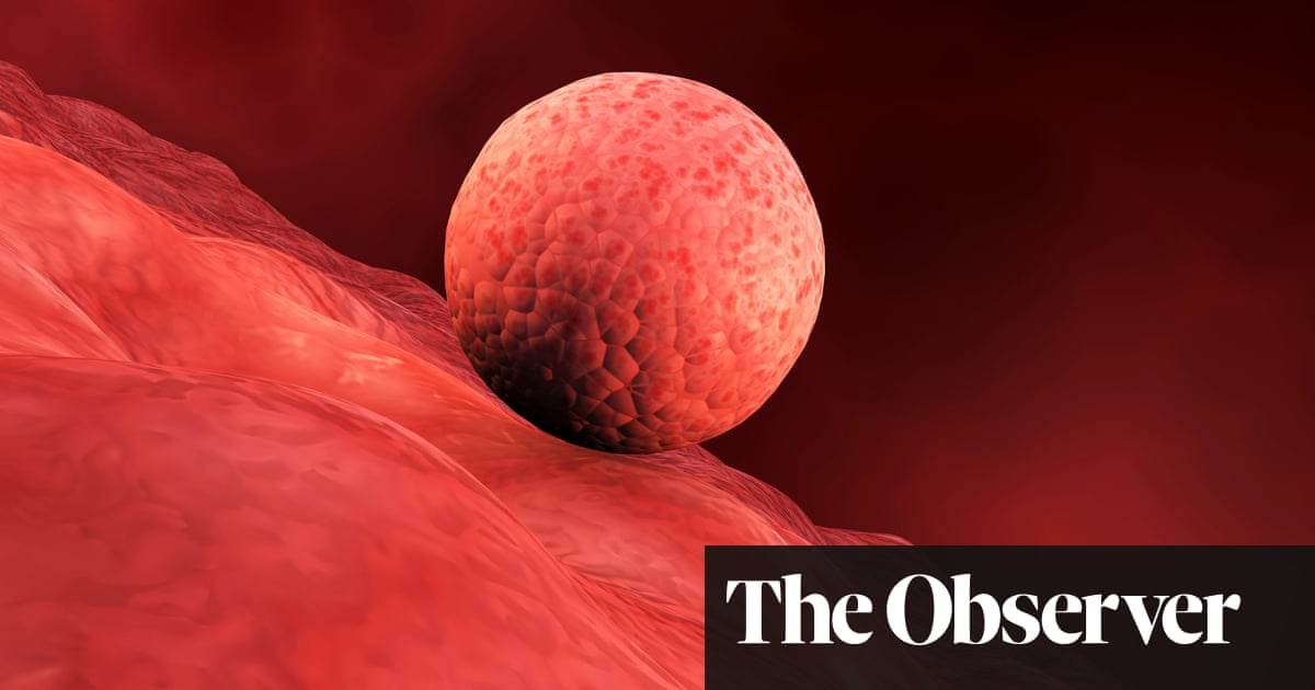 A Leap Forward Or A Step Too Far The New Debate Over Embryo