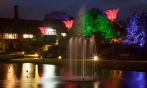 Jigantics tulip light installations at RHS Garden Wisley.