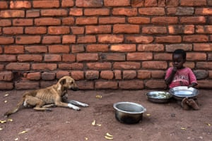 An emaciated dog watches a child eat in a village in Chikwawa, one of the areas most affected by drought in Malawi.
