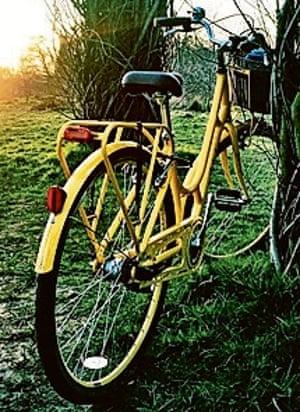 Yellow bike in countryside
