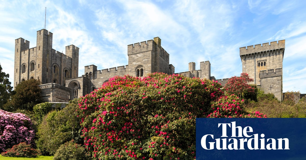 Insurgents to bring war on 'wokeness' to National Trust AGM