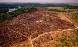 Deforestation in the Amazon basin in Colniza, Mato Grosso state, Brazil, on 29 August.