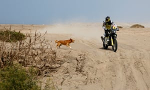 Rockstar Husqvarna Racing's Pablo Quintanilla discovers that the terrain isn't the only hazard that he has to watch out for