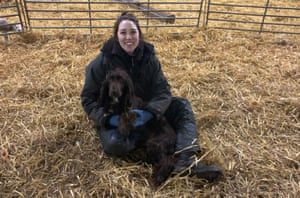 Comment survivre à l'hiver: le guide expert pour rester au chaud, en bonne santé et heureux | Vie et style