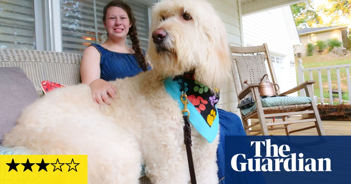 Dog Tales: The Making of Man's Best Friend review – are they just in it for the treats?