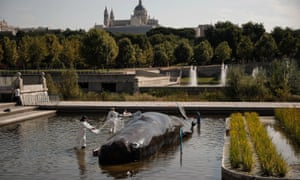 The whale in Madrid
