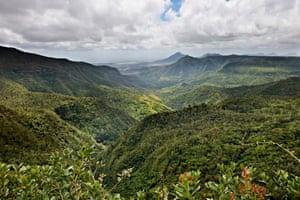 Black River Gorges national park.