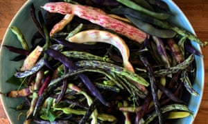 Bean feast: the last of the crop, some for eating, some for sowing.