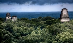 Maya temples at Tikal, Guatemala. Michael Coe wrote possibly the most influential tome ever published on Maya art and its hieroglyphic texts.