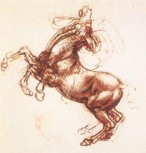 A Rearing Horse, c. 1503-4, by Leonardo da Vinci.