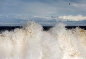 A seagull flies over a wave at Fudaihama beach in Fudai