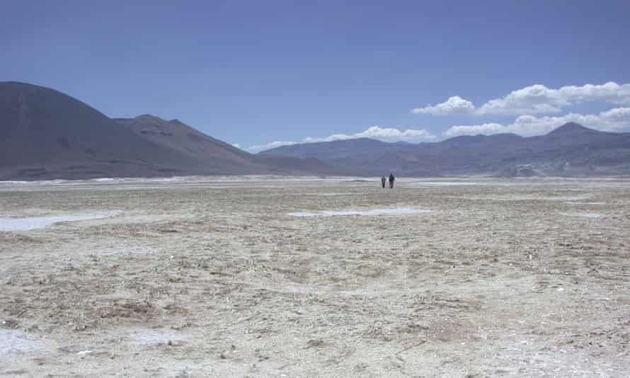 Randomly oriented, finger-length gypsum crystals give a shiny quality to the ground among the Salar de Gorbea dunes in the Andes.