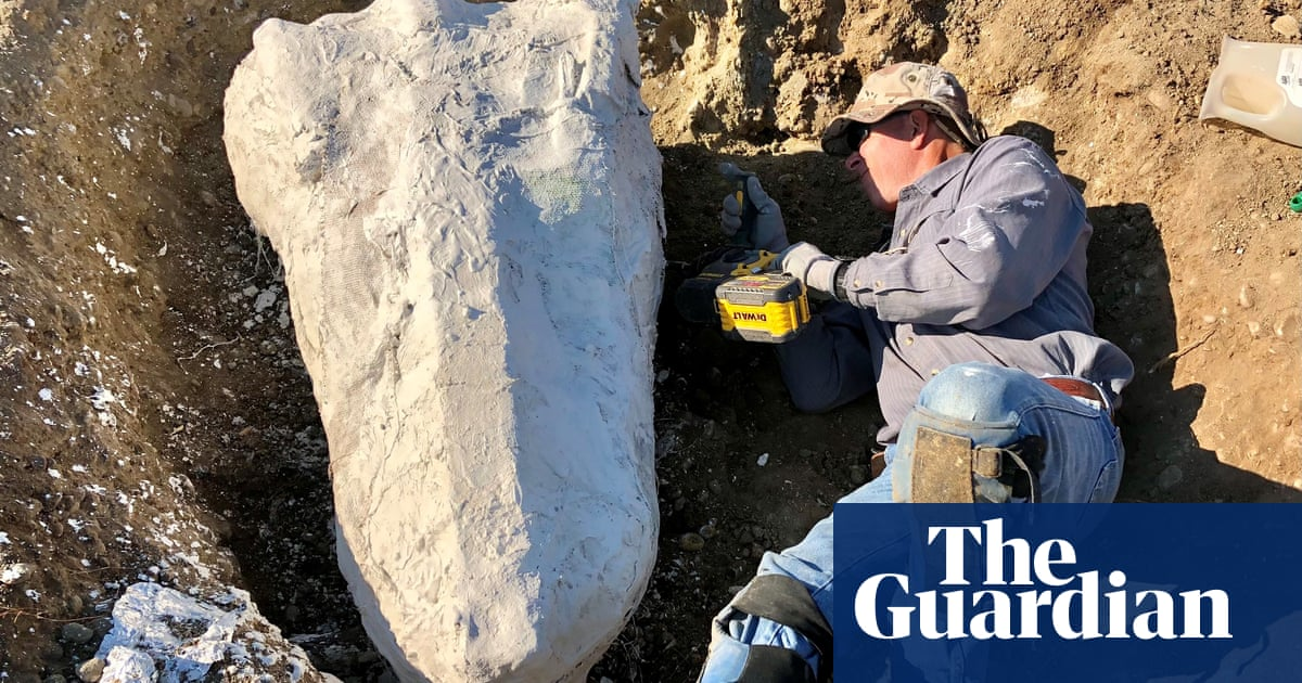How a ranger stumbled upon one of the largest fossil finds in California history