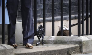 Larry half looks up as Theresa May arrives to David Cameron's last cabinet meeting before she becomes Prime Minister