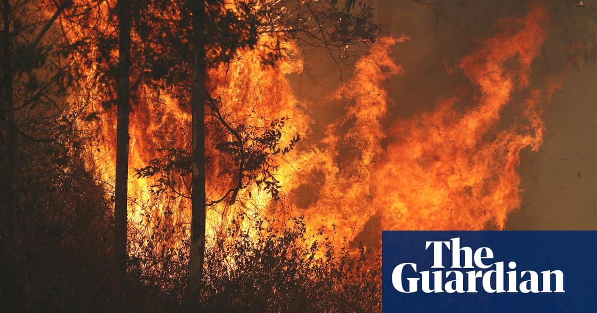 bushfires nsw - photo #33