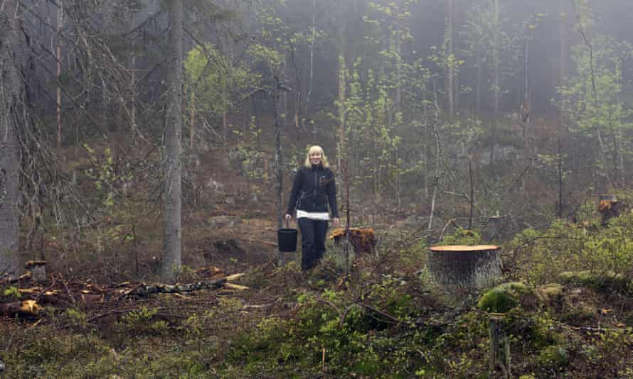 Katie Paterson in the Nordmarka forest, Oslo
