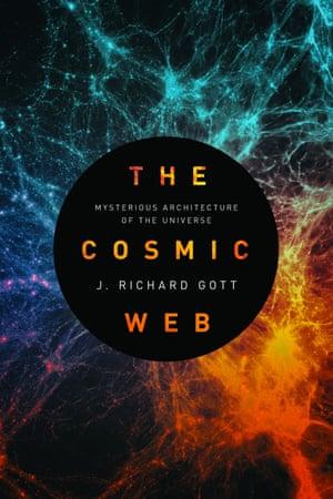 The Cosmic Web by JR Gott