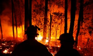 Firefighters silhouetted against burning trees at night