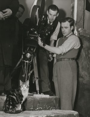 Cameramen filming cat on set