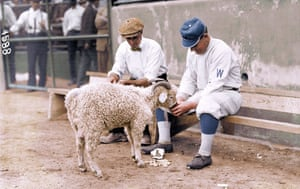 Herman A. 'Germany' Schaefer of the Washington Senators, feeding a goat in 1912.