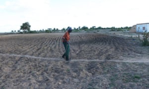 Jonathan Manyowa walks on his parched land in Chivi, Zimbabwe where he planted maize grain for the third time without success.