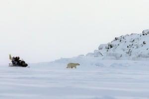 Russian researchers follow a Polar bear in the Arctic Ocean.