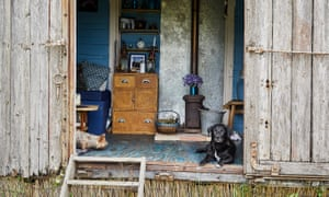 Two dogs in doorway of the railway wagon at Walnut Tree Farm