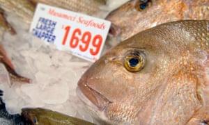 snapper in fish market