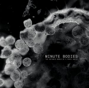 The sleeve of Tindersticks's Minute Bodies