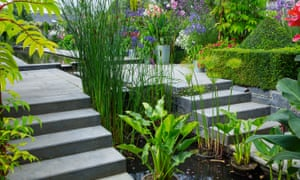 Steps beside the formal pool and rill, with box topiary and hagenia trees in pots.