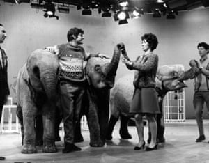 The Blue Peter team welcome elephants Dum Dum, Sarah and Emma into the studio. An elephant was famously incontinent on set in 1969.