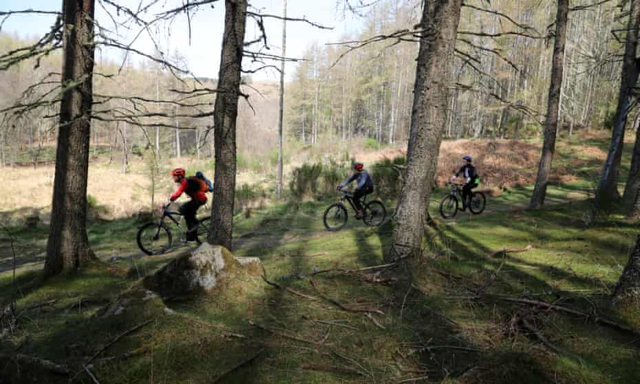 Cyclists on the route to Comrie town through the trees