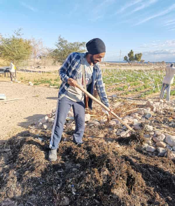 Habiba organic farm in southern Sinai.