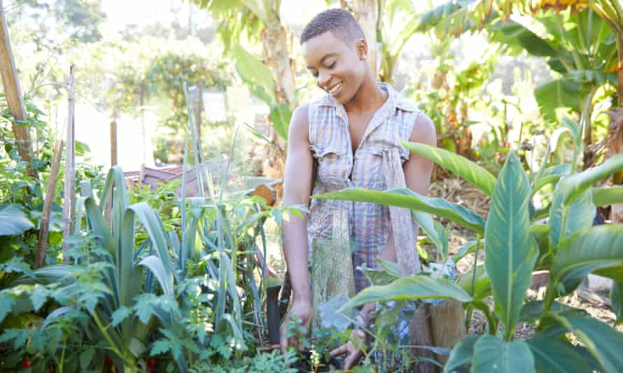 A young woman working in her abundant garden.