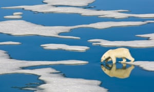 North pole could be 35C warmer than average this week, warn meteorologists  5392
