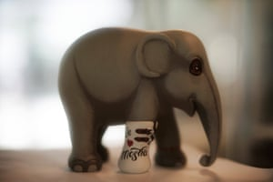 A figurine of Mosha the elephant, who is now a permanent resident at the hospital