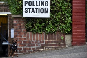 A dog waits outside a private garage doubling up as a polling station in Coulsdon