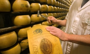 Tapping a parmigiano-reggiano cheese wheel