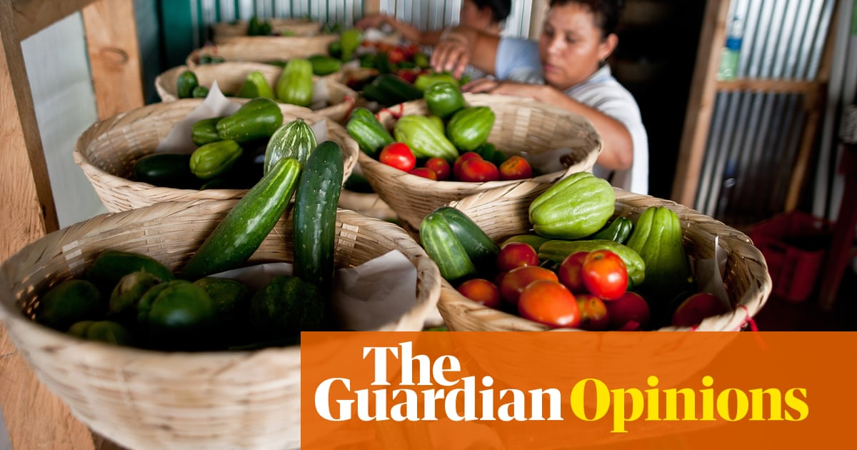 Small farmers have the answer to feeding the world. Why isn't the UN listening?