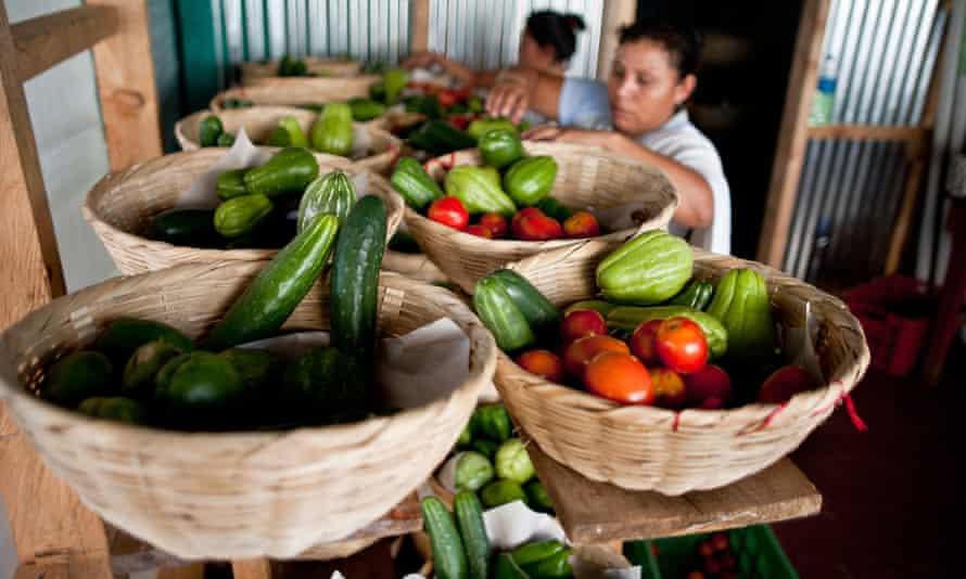 "Members of the ""Canasta Campesina"" (Farmers Basket) in Comasagua, El Salvador"