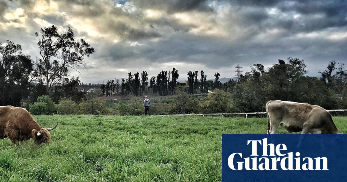 Biodynamic farming is on the rise – but how effective is