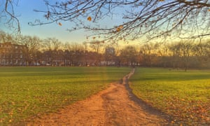 "Unofficial pathways, such as this one through Highbury Fields, London, can be seen to ""indicate [the] yearning"" of those wishing to walk."
