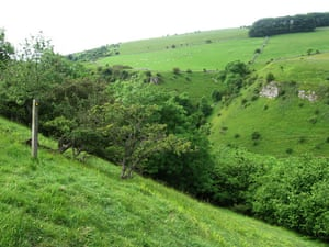 A view above Coombs Dale.