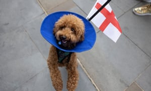 A woman walks her dog Pretzel, wearing a St George's flag, down Picadilly in London.